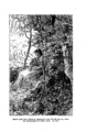 Elisabeth Werner, Vineta (1877), page - 0067.png