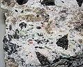 Emeralds-garnets-tourmaline in pegmatitic granite (Crabtree Pegmatite, Devonian; Crabtree Mountain, Mitchell County, North Carolina, USA) 4 (27237625549).jpg
