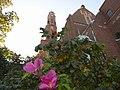 Engelbrektskyrkan-081.jpg