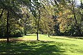 Englischer Garten Herbst-20.jpg