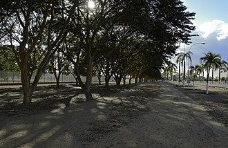 Anaco - Street in Anaco.