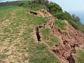 Erosion between Exmouth and Budleigh - geograph.org.uk - 705976.jpg