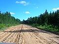 Estrada pro campo - panoramio.jpg