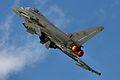 Eurofighter F-2000A Typhoon - RIAT 2014 (14472883160).jpg