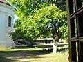 Exteriorul bisericii şi curtea interioară - Mănăstirea sârbă Sf. Gheorghe, jud. Timiş.jpg