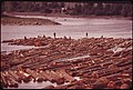 FISHERMEN ON A COMMERCIAL LOG RAFT ON THE WILLAMETTE RIVER - NARA - 548018.jpg