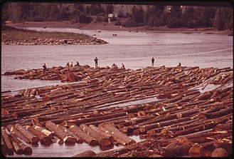Timber rafting - Timber rafting on the Willamette River (May 1973).