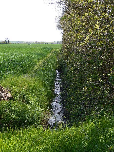 La rivière Devise à Chervettes, pas très loin de sa source.