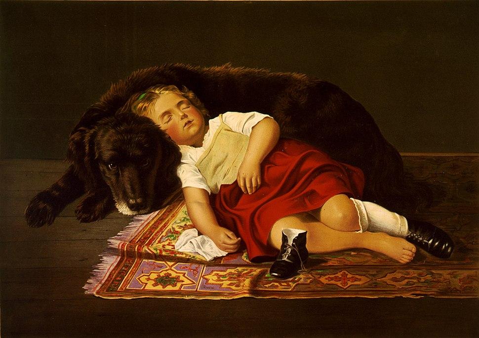 Faithfull watcher, 1871