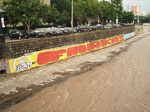 Mapocho River - Political propaganda on the walls of the river, in this case a failed presidential candidate Leonardo Farkas