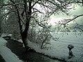 February Winter Light Glottertal - Mythos Black Forest Photography 2013 - panoramio (13).jpg