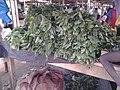 """Feuilles de dah ou """"da kumu"""" (Hibiscus sabdariffa).jpg"""