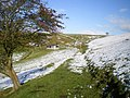 Field barn and footpath above Fachgynan - geograph.org.uk - 1049761.jpg