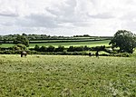 File:Fields near Weobley Castle - geograph.org.uk - 1491981.jpg
