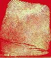 Fingerprint Identification (5883948105).jpg