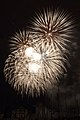 Fireworks - July 4, 2010 (4773759474).jpg