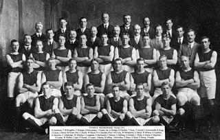 1913 VFL season