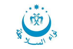 Flag of the Seljuk Brigade.png