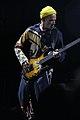 Flea 1012 (2).jpg
