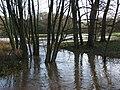 Flooded stream, Ashford Hill - geograph.org.uk - 301992.jpg