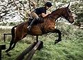 Flying Horseman MOD 45162926.jpg