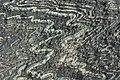 Folded serpentinite.jpg