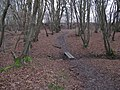 Footbridge over small stream near Downs Link path - geograph.org.uk - 1713322.jpg
