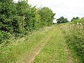 Footpath along a field's edge - geograph.org.uk - 1384105.jpg