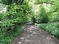 Footpath and farm track to Daylands Farm through Capite Wood - geograph.org.uk - 1296437.jpg