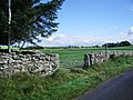 Footpath to Ploveriggs - geograph.org.uk - 551146.jpg