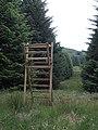 Forest watchtower - geograph.org.uk - 467144.jpg