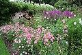 Formal gardens at Coleton Fishacre - geograph.org.uk - 928018.jpg