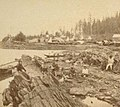 View of Fort Wrangell under construction in background, Stikine in foreground, 1868