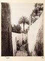 Fotografi från Capri - Hallwylska museet - 104103.tif