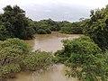 Foz do Ribeirão Piraí no Rio Jundiaí no limite dos municípios de Salto e Indaiatuba - panoramio (2).jpg