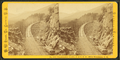 Frankenstein Trestle, P. & O.R.R. White Mountains, N.H, by Pease, N. W. (Nathan W.), 1836-1918.png