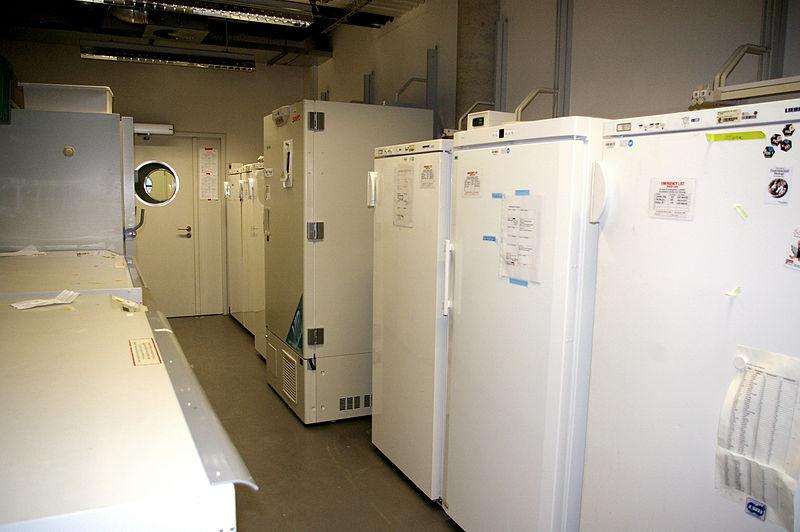 Mantenimiento cámaras frigoríficas