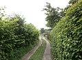 FrzBuchholz (45)Weinapfelweg Süd.JPG