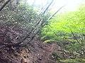 Fukiaicho, Chuo Ward, Kobe, Hyogo Prefecture 651-0058, Japan - panoramio (27).jpg