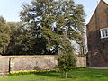 Fulham Palace, March 2014 09.JPG