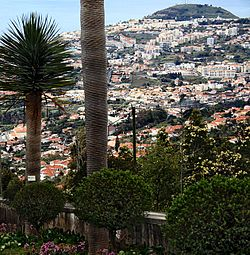 Monte as seen from the centre of Funchal