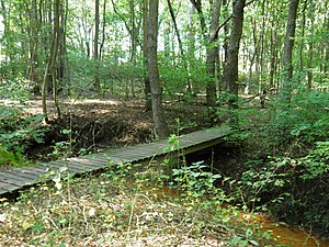 Rowan College at Gloucester County - RCGC trail