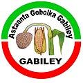 Gabiley logo.jpg