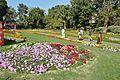 Garden - Agri-Horticultural Society of India - Alipore - Kolkata 2013-02-10 4848.JPG