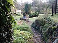 Garden - panoramio (28).jpg
