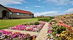 Garden Colours IMG 3072 (19942656255).jpg