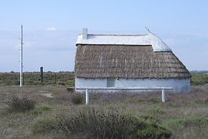 "Camargue - A 20th-century ""gardian"" home. The pole is used to climb up and oversee the animals"