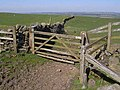 Gate on St Oswald's Way - geograph.org.uk - 1268543.jpg