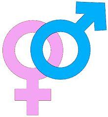 Cinsiyet psikolojisi ve cinsel psikoloji. Başlıca farklılıklar nelerdir