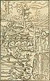 Georgii Agricolae De re metallica libri XII. qvibus officia, instrumenta, machinae, ac omnia deni ad metallicam spectantia, non modo luculentissimè describuntur, sed and per effigies, suis locis (14593341589).jpg